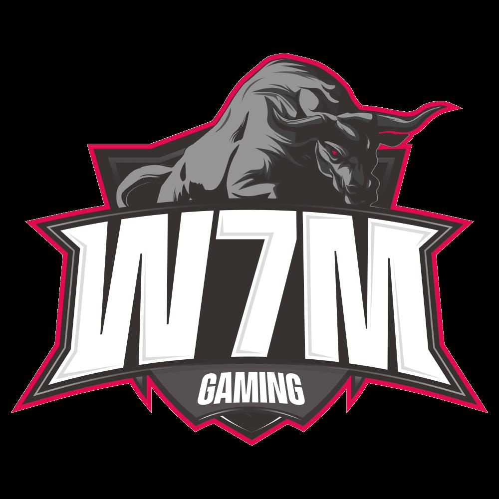 W7M Gaming fem