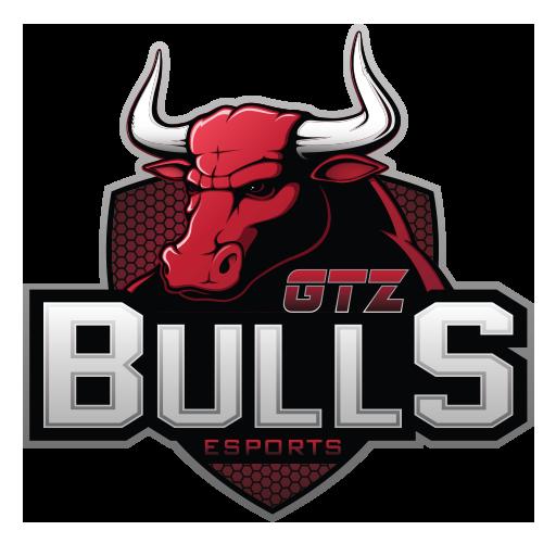GTZ Bulls